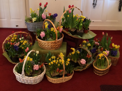 easter_flowers_2015_2